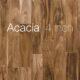 Acacia | FRED-114-2-5-ACA