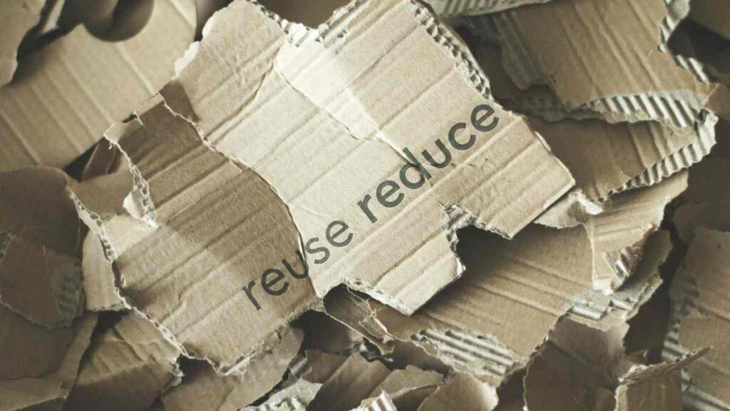 cardboard-compost